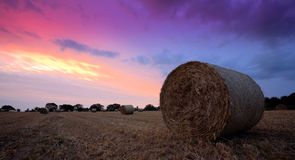 Straw Bales at sunset Stock Images