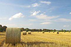 Straw bales at sunset Royalty Free Stock Photography