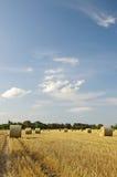 Straw bales at sunset Royalty Free Stock Photo