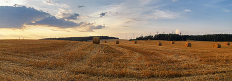 Straw bales in the sunset Royalty Free Stock Image