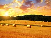 Straw bales at sunset. stock image