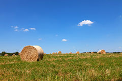 Straw Bales sur un champ Photo libre de droits