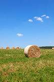 Straw Bales sur un champ Photographie stock libre de droits