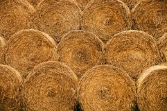Straw bales texture. Background Photo royalty free stock image