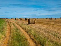 Straw bales trail Stock Photography