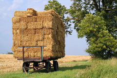 Straw bales on a trailer. Stock Image