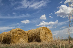 Straw bales under clouds Royalty Free Stock Images