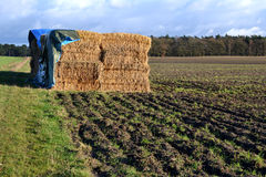 Straw bales under a tarpaulin. Royalty Free Stock Photography