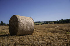 Straw bales. Waiting to drop-off Royalty Free Stock Images
