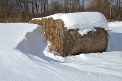 Straw bales in winter Royalty Free Stock Photography