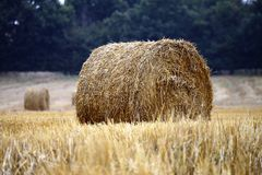 Straw bales on the yellow field Royalty Free Stock Photos