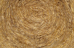 Straw Ball. Detail of texture Straw Ball royalty free stock photo