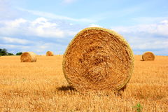 Straw Ball Stock Photos