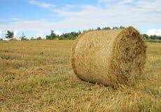 Straw ball Stock Photos