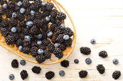 Straw basket full of blackberries and blueberries, berries on a light table. Stock Images