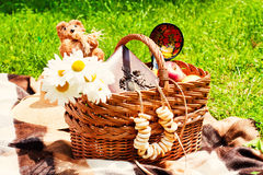 A straw basket on the nature. Straw basket with daisies in nature, bear, cracknels Stock Image