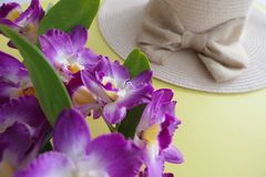 Straw Beach Female Hat och rosa orkid?blomning som isoleras p? en gul bakgrund arkivbilder
