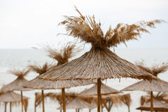Straw Beach Umbrellas Arkivfoto