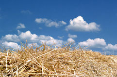 Straw, blue sky and clouds Royalty Free Stock Photos