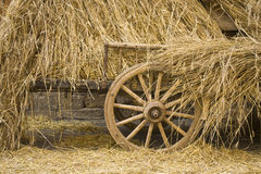 Straw and carriage. A carriage loaded with golden straw Stock Photo