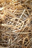 Straw Stock Photography