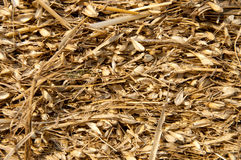 Straw closeup Royalty Free Stock Photos