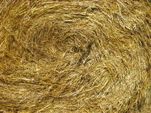Straw closeup for backgrounds Stock Photo