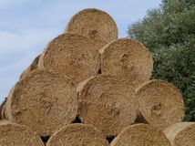 Straw at the countryside Stock Image