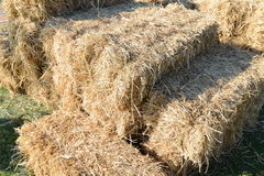 Straw for a cows Royalty Free Stock Photo