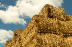 Straw cube Stock Photography