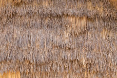 Straw or Dry Grass Background Surface Texture Pattern Royalty Free Stock Photography
