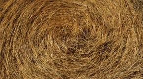 Straw, dry straw, hay straw yellow background, hay straw texture. Yellow hay animal feed background stock image