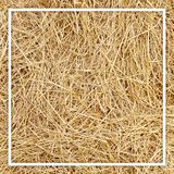 Straw, dry straw, hay straw yellow background texture stock photos