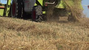Straw and dust falling from farm harvester combine working in agriculture field. 4K stock footage