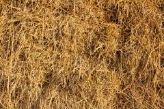 Straw in Farm Royalty Free Stock Photo