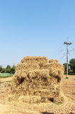 Straw in farm,Pile of straw by product from rice field after col Stock Photography