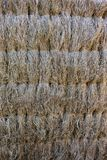 Straw fense texture.  stock photos