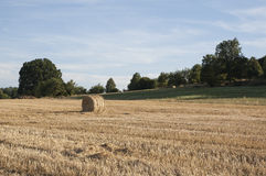 Straw on the field. Bale of straw lying on the field royalty free stock photography
