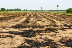 Straw field burn Royalty Free Stock Photo