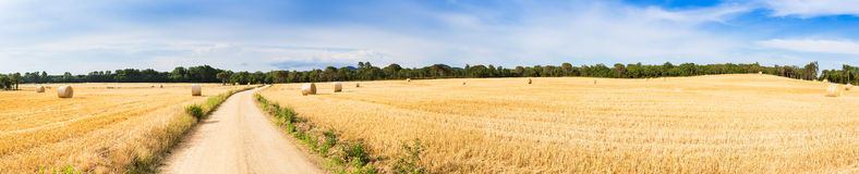Straw field panorama Royalty Free Stock Image