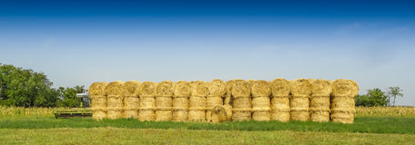 Straw on the field. Royalty Free Stock Images
