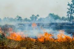 Straw fire Stock Photo
