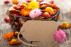 Straw flowers with gift tag Stock Photos