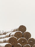 Straw Fodder Bales in Winter Royalty Free Stock Image