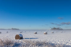 Straw Fodder Bales in Winter Stock Photography