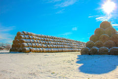 Straw Fodder Bales in Winter Stock Photos