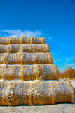 Straw Fodder Bales in Winter Royalty Free Stock Photos