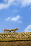 Straw fox on the roof. An Irish old house detail Royalty Free Stock Images