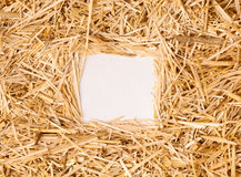 Straw Frame Stock Photography