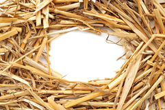 Straw frame Royalty Free Stock Photo